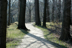 Forest Path. Path through the metroparks in Rocky River Reservation Stock Image