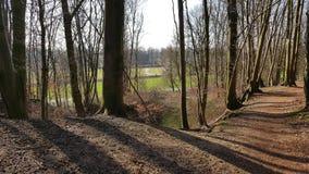 Forest path. In autumn. Foto taken in Doorwerth in Wageningen Royalty Free Stock Photo