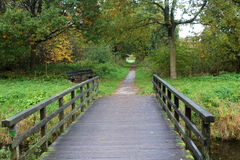 Forest path with bridge Royalty Free Stock Images