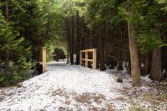 Forest Path a couvert dans la neige fraîche en défunt automne Images libres de droits
