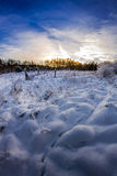 Forest path covered with snow at sunrise Royalty Free Stock Images