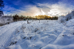 Forest path covered with snow at sunrise Royalty Free Stock Photography
