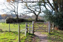 Forest Path Gate. In Autumn Royalty Free Stock Photo