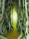 Forest path. Hidden path through an ancient forest vector illustration