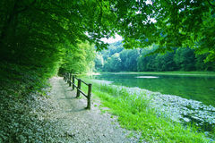 Forest path by the lake Stock Photo