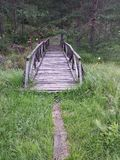 Forest path and little wooden bridge Stock Photo