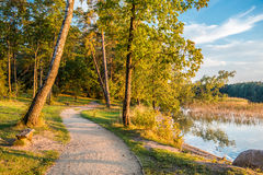 Forest path near lake Royalty Free Stock Image