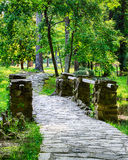 Forest path over bridge Royalty Free Stock Images