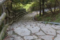 Beautiful path in between the trees. Forest path of stones and wood fiance Stock Photography