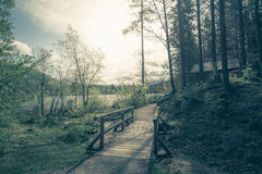 Forest path to a wooden hut in the Alps. Europe Stock Photography