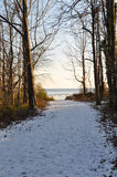 Forest Path zum Strand im Winter Stockbild