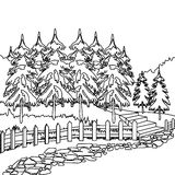 Forest pathway coloring page Stock Photos