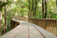 Forest pedestrian bridge Stock Photography
