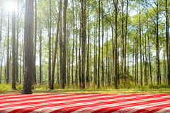 Forest picnic background. Royalty Free Stock Photo