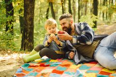 Forest picnic hiking. Healthy lifestyle. Nature picnic. Healthy snack. Vitamin charge. Family picnic. Hipster bearded stock photography