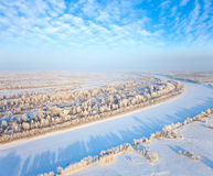 Forest of plain and small river in winter Royalty Free Stock Image