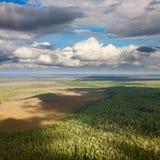 Forest plain under cumulus clouds Stock Photos