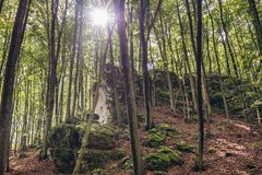 Forest in Polish Jura region. Rock in natural preserve called Falcon Mountains in Polish Jurassic Highland, Silesia region in Poland royalty free stock photo