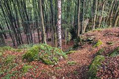 Forest in Polish Jura region. Rocky hills of natural preserve called Falcon Mountains in Polish Jurassic Highland, Silesia region in Poland royalty free stock photography