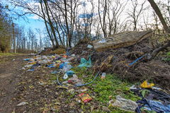 Forest pollution 3 Royalty Free Stock Photo