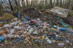 Forest pollution 2 Stock Photo