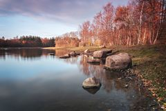 Forest pond in autumn royalty free stock photos