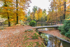 Forest pond with bridge in autumn colors Stock Image