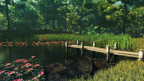 Forest Pond, 3d CG Royalty Free Stock Photography