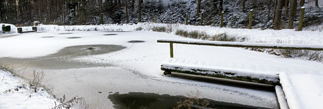 Forest pond with icy surface Royalty Free Stock Image