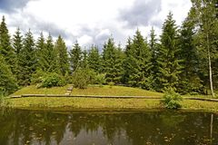 Forest pond Stock Photography