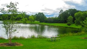Forest Preserve View In The Summer stock photo