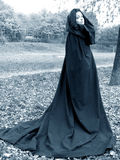 Forest princess. In long black cape Stock Images