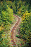 Forest railroad. Railway running through autumn forest Royalty Free Stock Photography