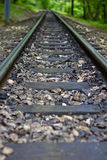 Forest railway line Stock Photo