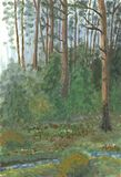 Forest after rain. Oil painting hand drawn with dark pine forest Royalty Free Stock Photography