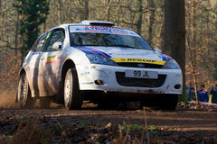Forest rally stage Stock Image