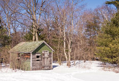 Forest ranger shed in winter snow Stock Images
