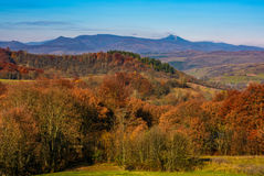 Forest with red foliage on hills in countryside. Forest with red foliage on hills in autumnal countryside. stunning view of mountainous area with gorgeous high Stock Photo