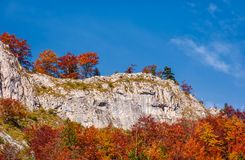 Forest in red foliage on a rocky cliff. Beautiful nature scenery on fine autumn day in Mountains Stock Photo