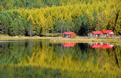 Lake reflections in fall. Forest and red houses reflections on lake in fall royalty free stock image
