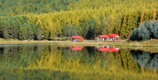 Lake reflections in fall. Forest and red houses reflections on lake in fall royalty free stock photography