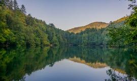 Forest Reection über dem See Lizenzfreies Stockbild