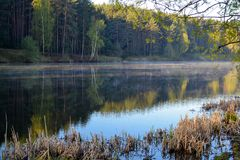 The forest is reflected in the calm blue water of the forest lake. Early morning. Fog over the water. Stock Photo