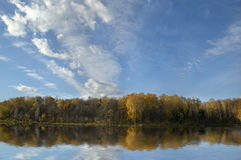 Forest reflected in lake. Beautiful autumn forest reflected in lake Stock Photo