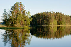 Forest reflected on lake Royalty Free Stock Photos