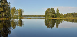 Forest reflected on lake. Scenic view of forest reflected on lake Stock Photos