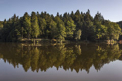 Forest reflected in lake Stock Photo