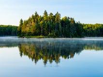 Forest Reflected na lagoa de Vermont imagens de stock