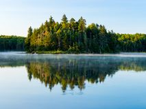 Forest Reflected in Vermont Pond Stock Images