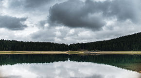 Forest reflected in water of the Black Lake Royalty Free Stock Image